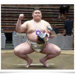矢後太規は尾車部屋へ!膝のケガの相撲への影響や実績も調査!